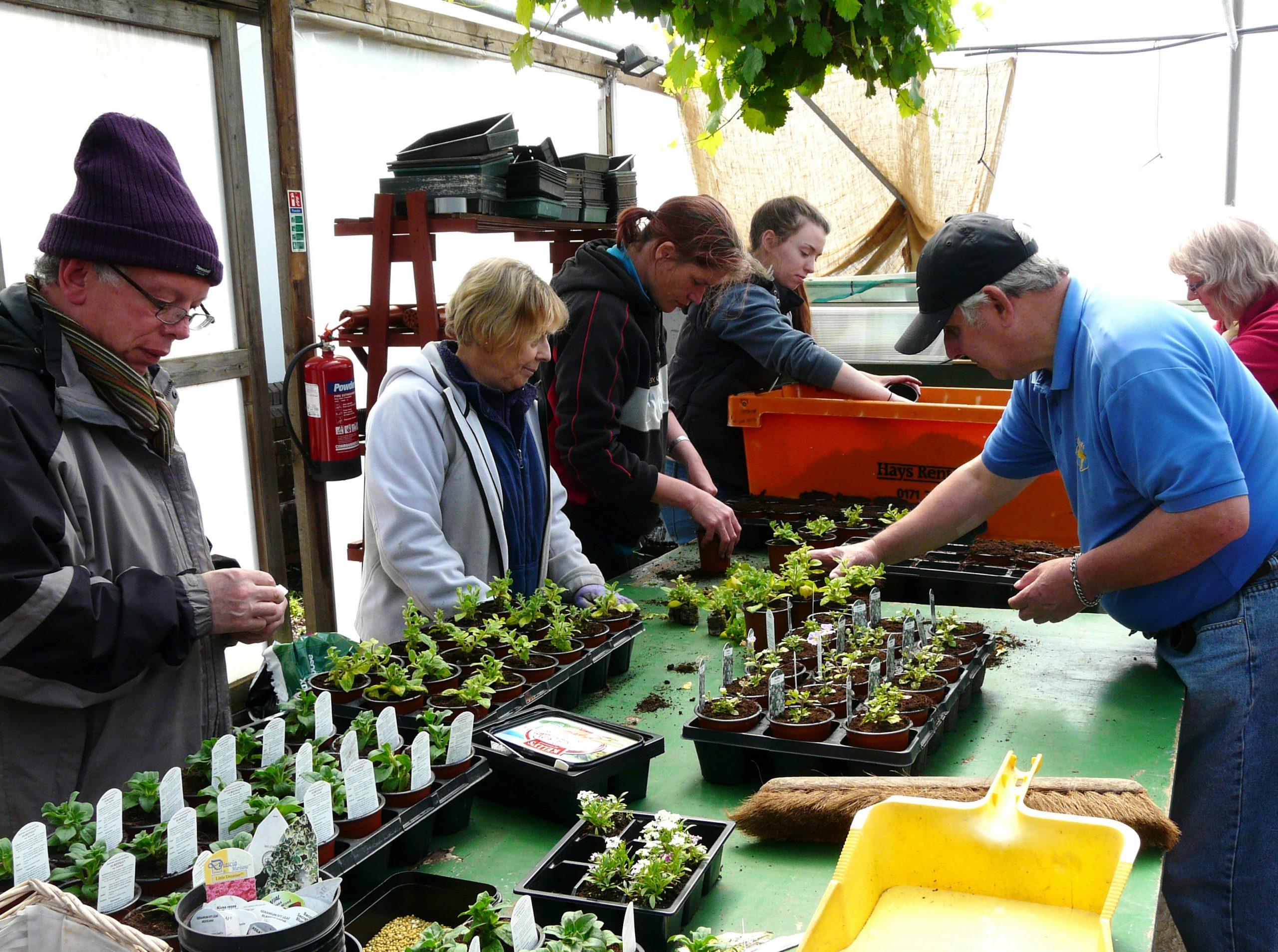 V21 Garden Nursery @ Heath